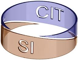 Séminaire SI-CIT 2011